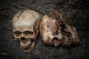 läskiga skalle på smutsig jord foto