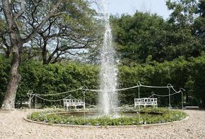 vatten fontän i trädgården foto