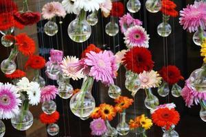 blommor i vaser foto