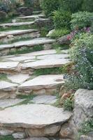 trappor och blommor foto