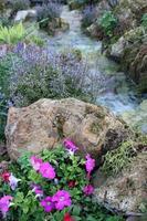 litet vattenfall med blommor foto