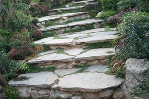 trappor i en trädgård foto
