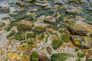 kristallklart vatten med många stenar