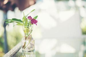 lila blommor i en vas på ett bord utomhus