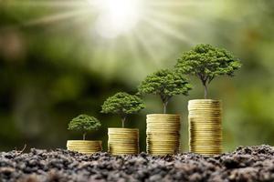 mynthög med träd som växer ovanpå mynt, idé för penningtillväxt och hållbara investeringar foto