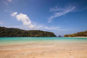 tropisk strand under dagen foto