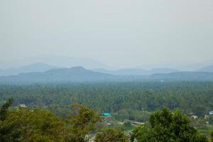 skog på bergen