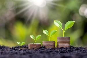 växa tidigt på mynt och jordidéer för att spara pengar, finansiell tillväxt och vinst från affärsinvesteringar foto