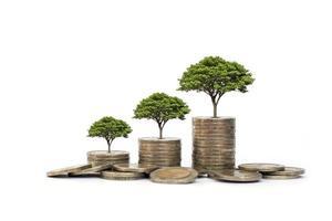 tillväxt av gröna bladväxter på mynt på vit bakgrund, affärsstartidé och affärsbyggnad till framgång foto