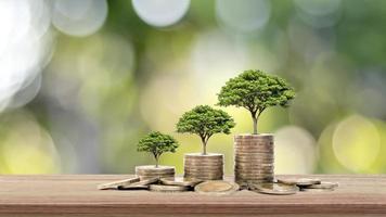 trädet växer på en stapel pengar på ett träbord och naturlig bakgrund, begreppet finansiella investeringar och ekonomisk expansion