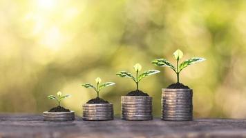 trädet växer på en hög med mynt och trägolv och en suddig grön natur bakgrund. koncept för ekonomisk tillväxt foto