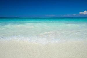 tropisk strand på dagtid foto