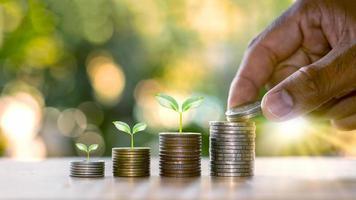 mänskliga händer som håller mynt och växter som groddar på myntstapeln av ekonomiska idéer och affärstillväxt foto