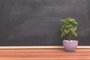 växtkruka på skrivbordet