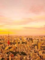 Flygfoto över Tokyo stad vid solnedgången