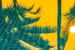 palmer som reflekterar i utomhuspoolen