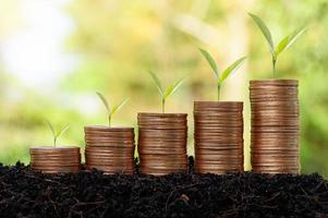 pengar mynt stack, investering koncept