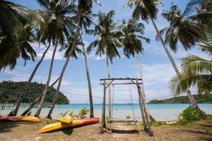 gunga på en strand foto