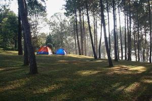 campingtält på grönt gräs foto