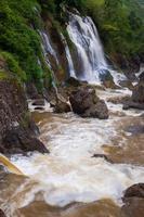 vattenfall i en skog foto