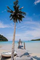 träbro och palmträd med en båt foto