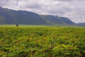 kassava gård framför berg mot en molnig himmel