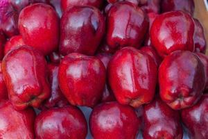 närbild av röda äpplen foto