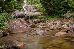 vattenfall på stenar i skogen foto