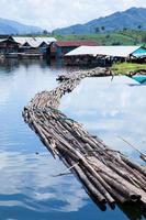 bro som tumlar i vattnet foto