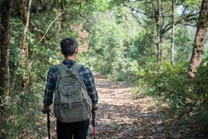 ung vandrare med stolpar som rör sig upp på bergsspåret foto