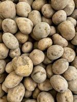 närbild av potatis foto