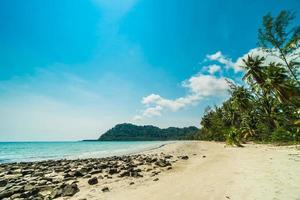 tropisk strand och hav med kokospalmer