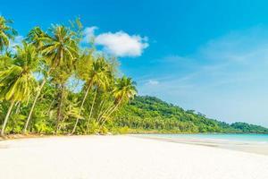 tropisk strand och hav med kokospalmer foto