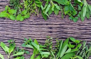 färska gröna örter på trä rustik bakgrund foto