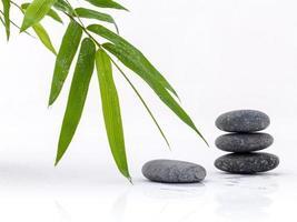 bambu och svarta stenar foto