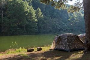 campingtält under tallskogen i solnedgången vid pang-ung