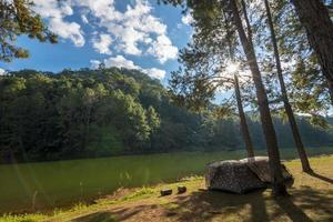 campingtält under tallskogen nära sjön i solnedgången