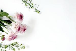 vit bakgrund med vackra blommor