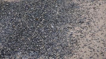 strand i new york city med sand och småsten foto