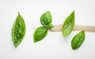 söta basilikablad på en vit sjaskig träbakgrund foto