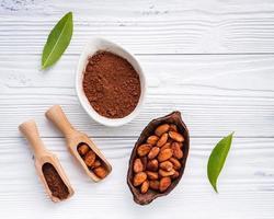 kakaopulver och kakaobönor på en sjaskig vit bakgrund foto