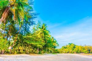 tropisk strand med palmer foto