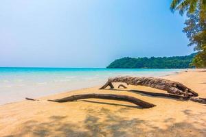 tropisk strand i Thailand