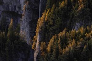 steniga berg i en höstplats foto