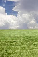 grönt gräs och blå molnig himmel foto