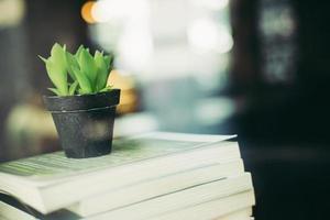böcker och kaktus på café foto