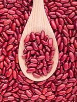 röda njure bönor på en sked foto