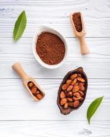 kakaopulver och kakaobönor i rätter foto