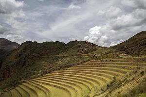 jordbruks terrasser i Pisac, Peru foto