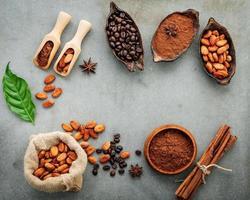 ram av kakaopulver och kakaobönor foto